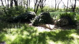 Lost gardens 5